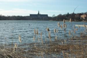 Aussicht aufs Nordiska museet