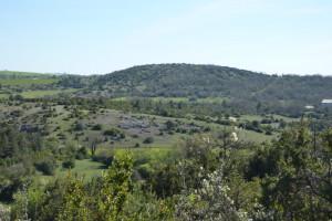 Die hügelige Buschlandschaft etwa eine Stunde nördlich von Montpellier. Hier werden hauptsächlich Schafe gezüchtet.