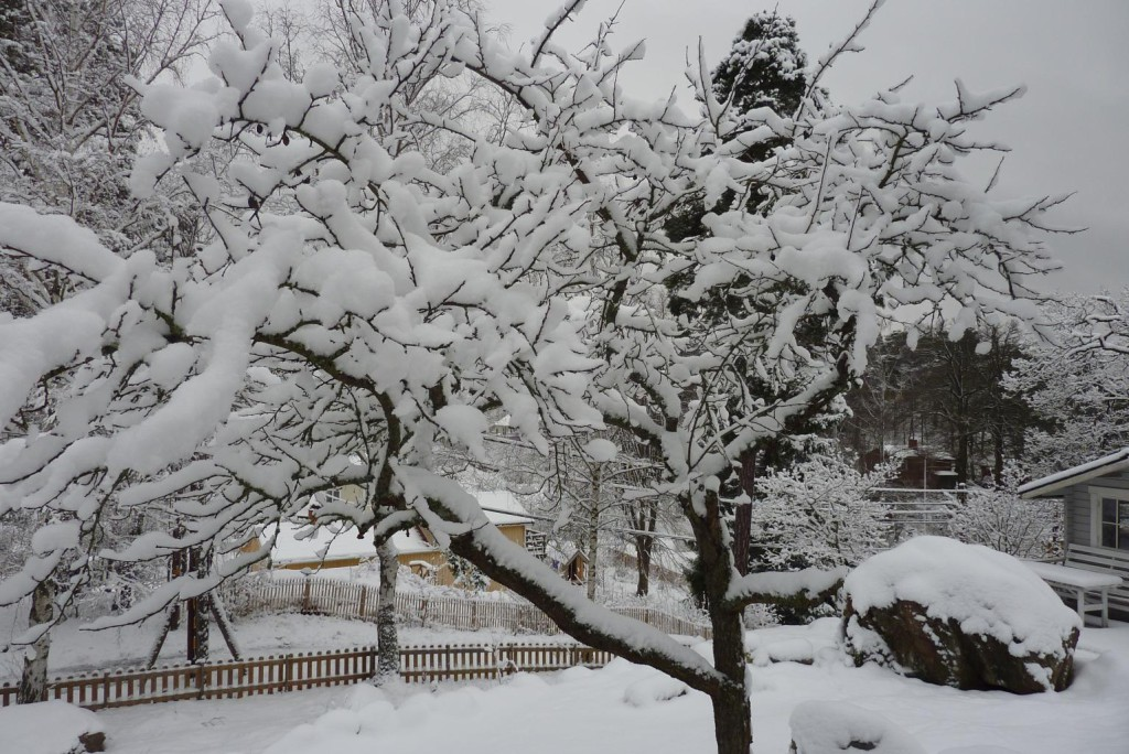 jede Menge Schnee